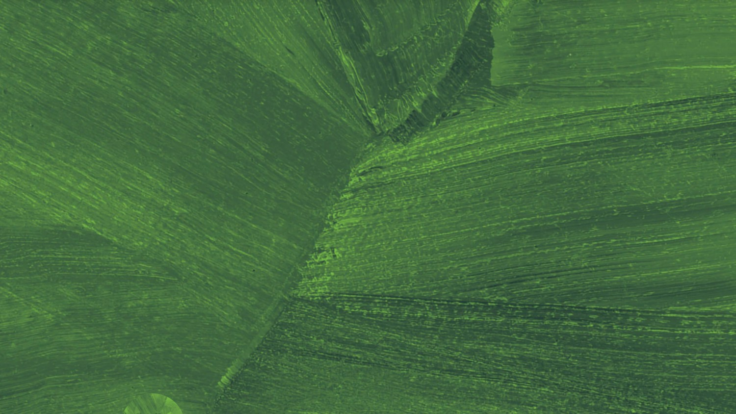 Seventh Generation leaf texture